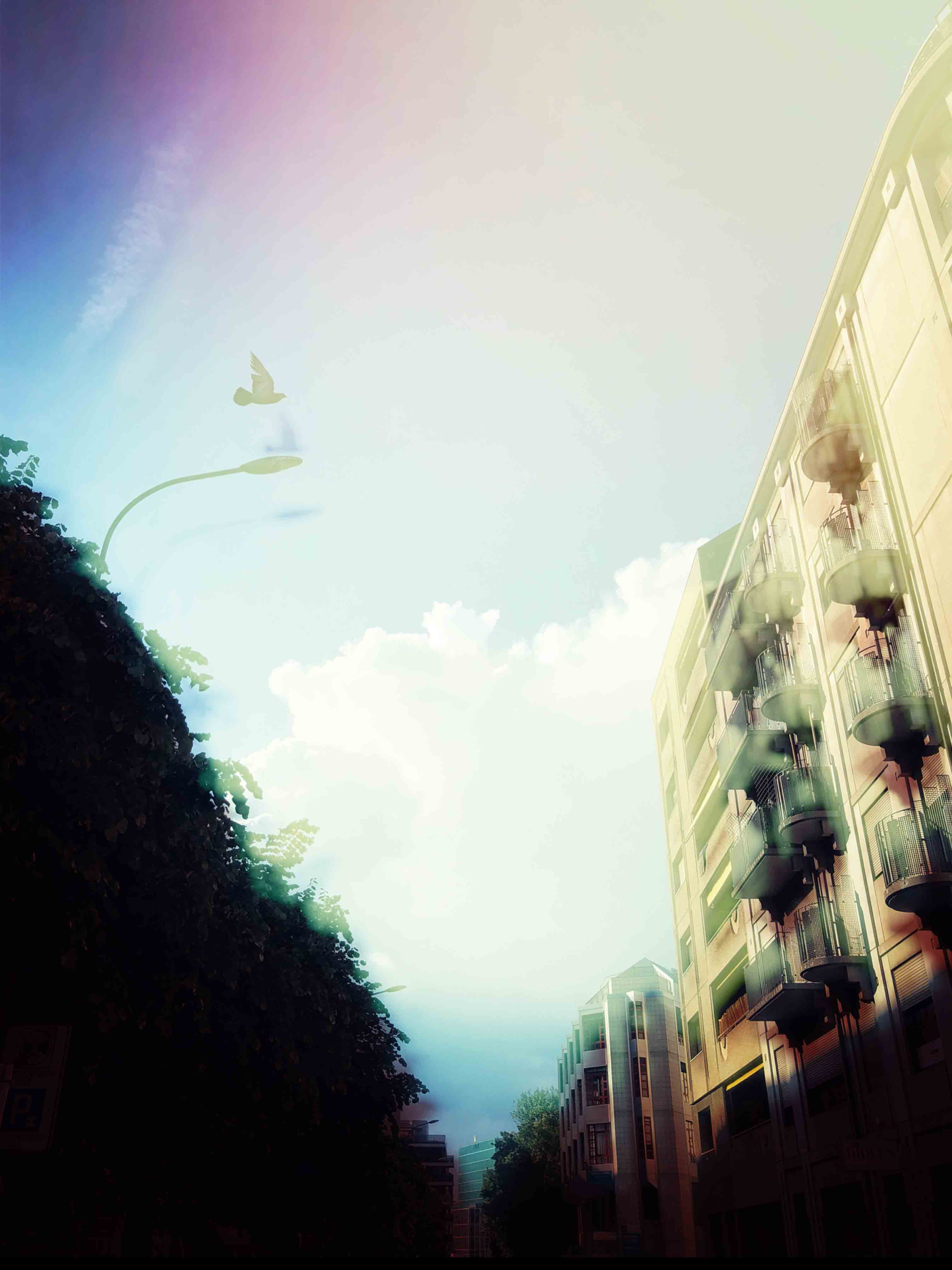 Photographie_double_exposition_snapseed_borisdunand_13