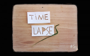 blocage-créatif-timelapse_5_plexus_boris_dunand